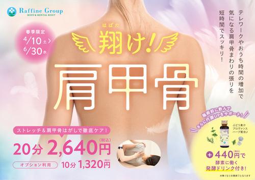 翔け!!!肩甲骨キャンペーンポスター